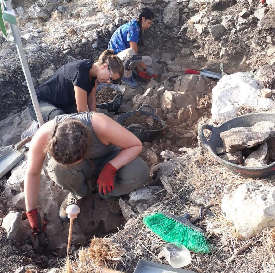 LEIA project and field school students at a dig site