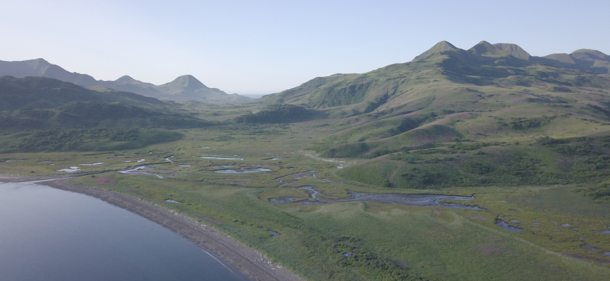 Aerial photo of Tanginak Anchorage. Ing'yug archaeological site is located on the small mound in the foreground, behind the beach. (Photo credit: Ben Fitzhugh)
