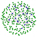 Covid-19 transmission network model