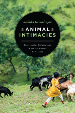 "Cover of book ""Animal Intimacies"""