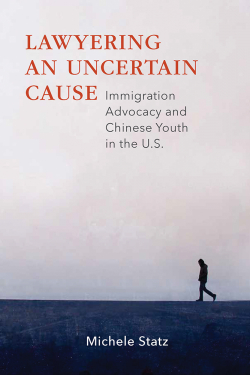 Lawyering an Uncertain Cause book cover