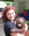 Orangutan Rescue, Indonesia