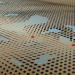tensor field map